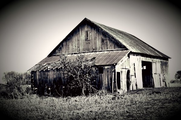 Images by Terra Luna #ohiobarnproject